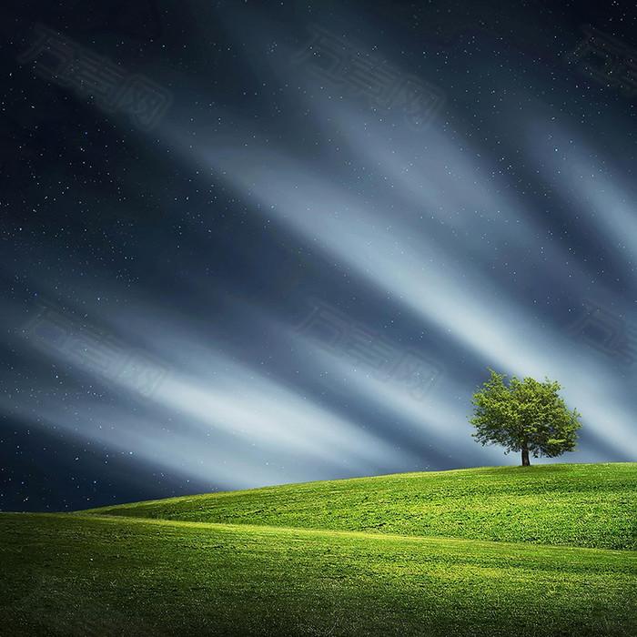 浪漫草原背景