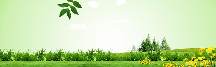 春天背景banner