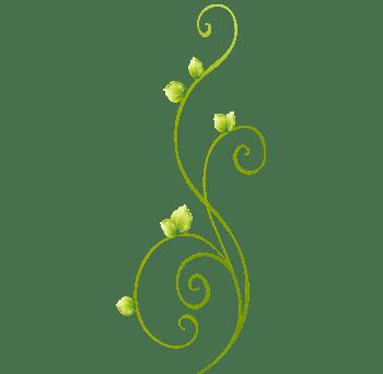 浅绿温暖藤蔓素材