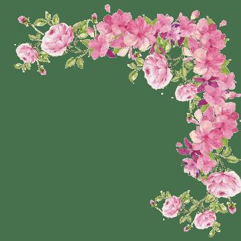 小清新手绘花边框