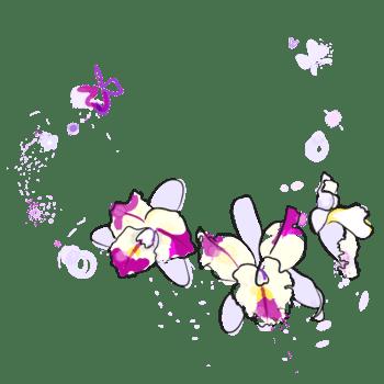 卡通手绘淡紫色洋兰花