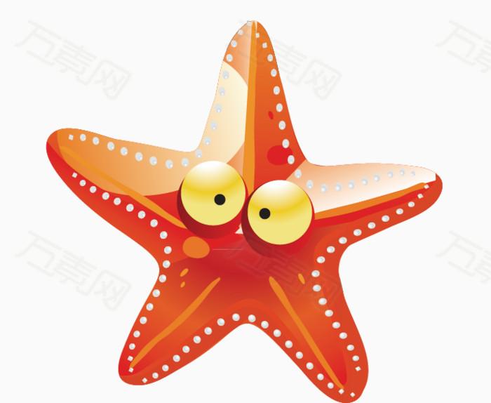 海星 海洋动物 眼睛 五角星