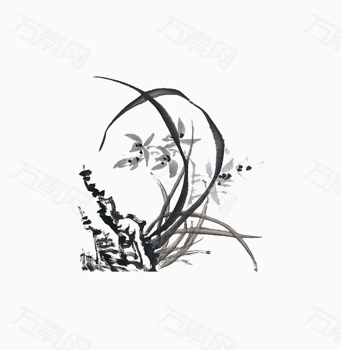 兰花怎么画步骤图