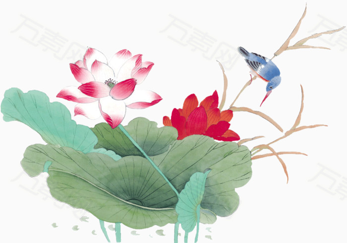 荷叶 卡通手绘 花卉植物  装饰 荷花 鸟