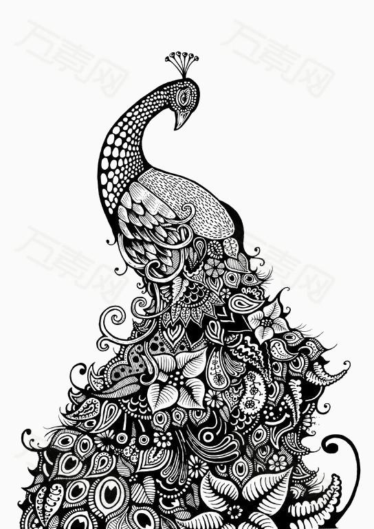 花纹孔雀 卡通 手绘 动物 黑白