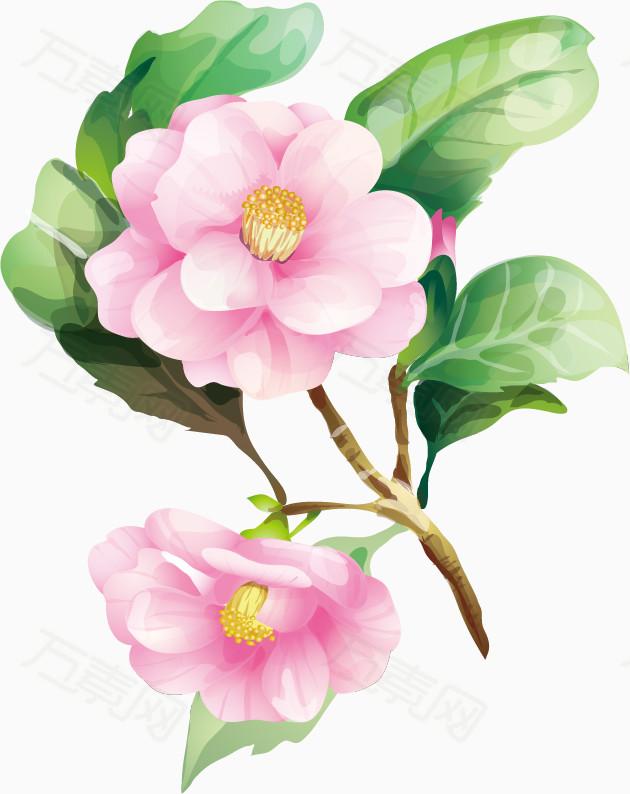 卡通手绘  手绘水粉花朵  平面设计 设计 花朵 平面 自然  png