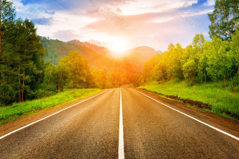 阳光下的森林马路素材背景图片
