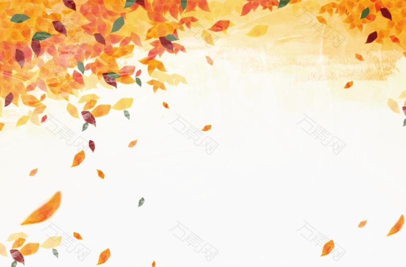 秋天落叶素材
