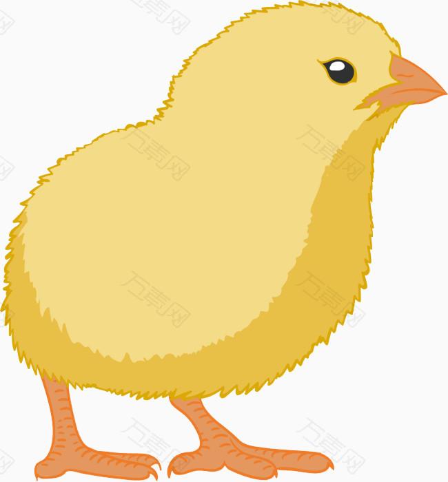 黄色片和动物干_卡通动物黄色小鸡