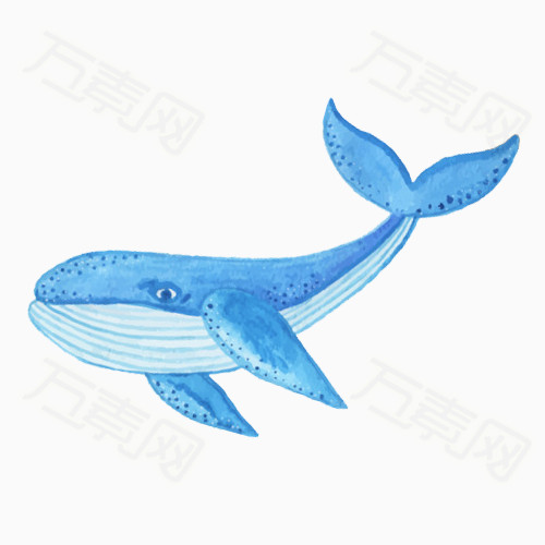 手绘蓝色小鲸鱼