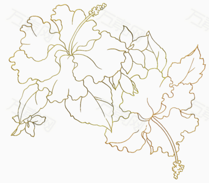 花朵简笔画大全 10种花朵简笔画图片教程,儿童学画花朵 聚巧网