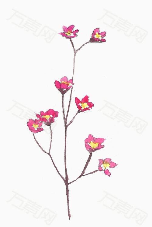 水彩图案可爱图案水彩图案可爱图案风格图片下载 水彩 棉花 桃花 鲜花