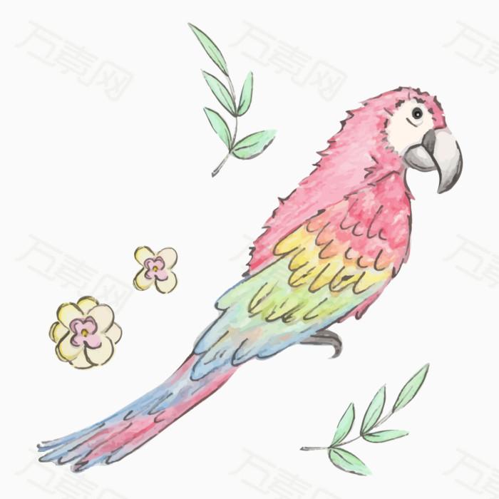 手绘水彩鹦鹉