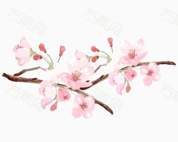 手绘唯美樱花