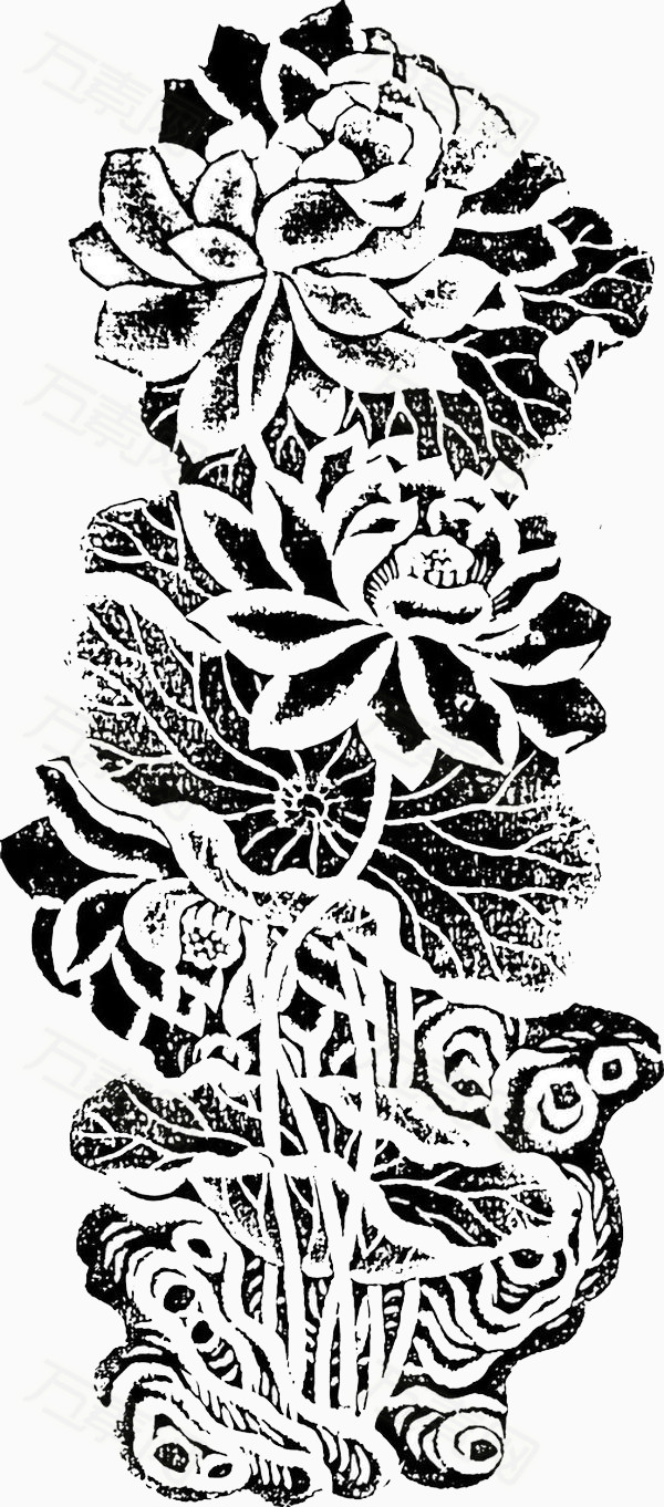 万素网提供黑白手绘花卉素材png设计素材,背景素材下