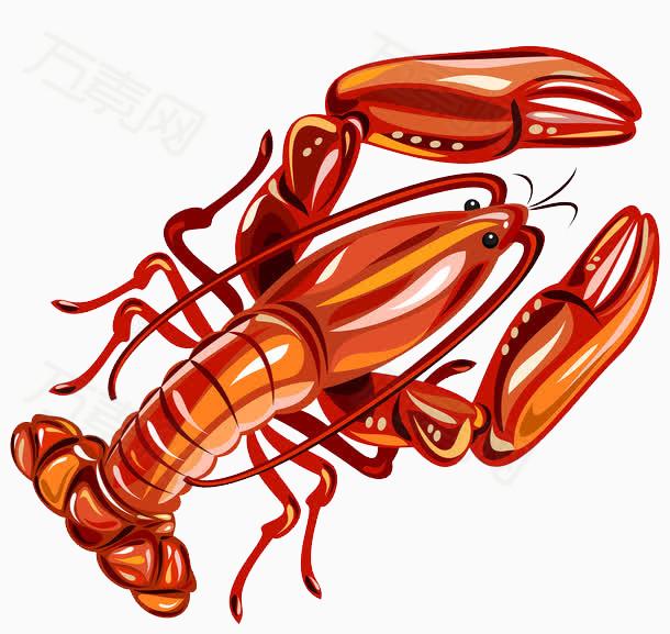 新鲜小龙虾免费下载   红色  海鲜   手绘小龙虾