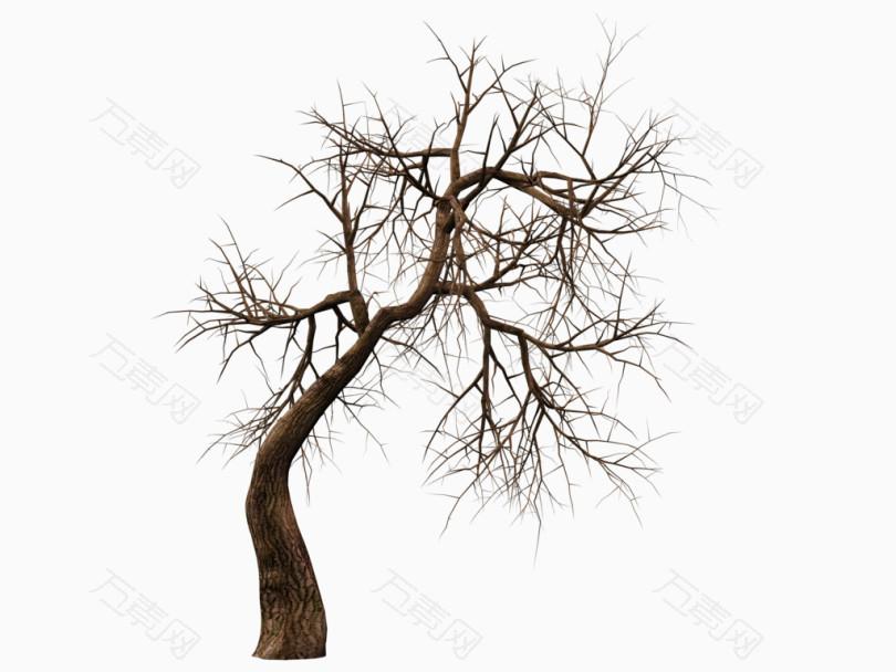 枯萎的歪脖子树