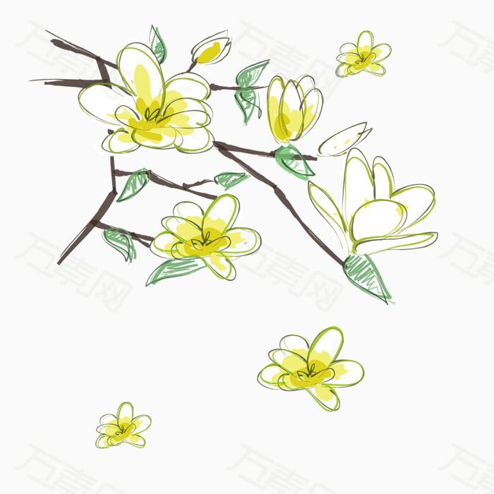 花朵 白色 花枝 植物 花卉 手绘 飘落的花瓣