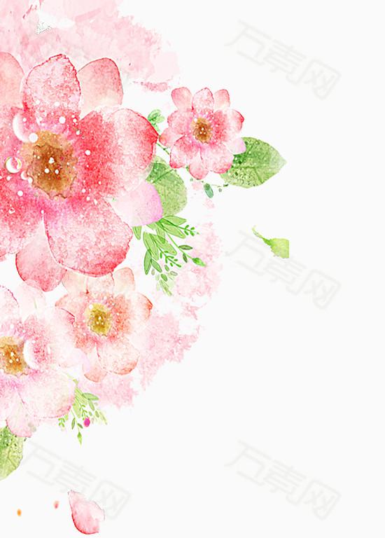 手绘清新唯美花卉