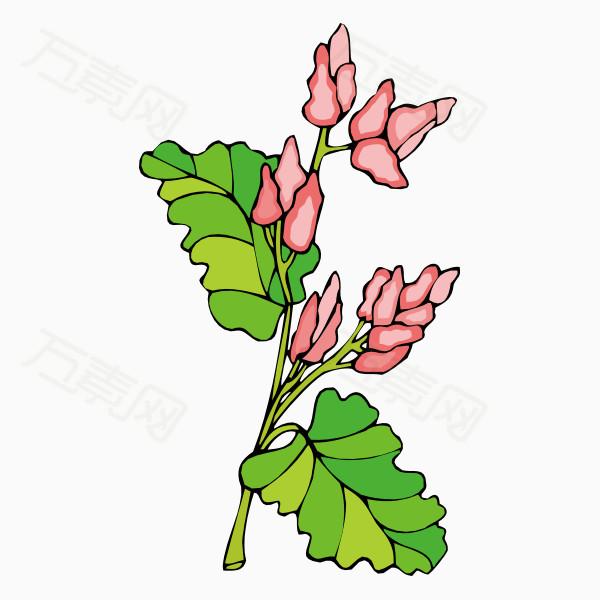 卡通手绘花卉植物