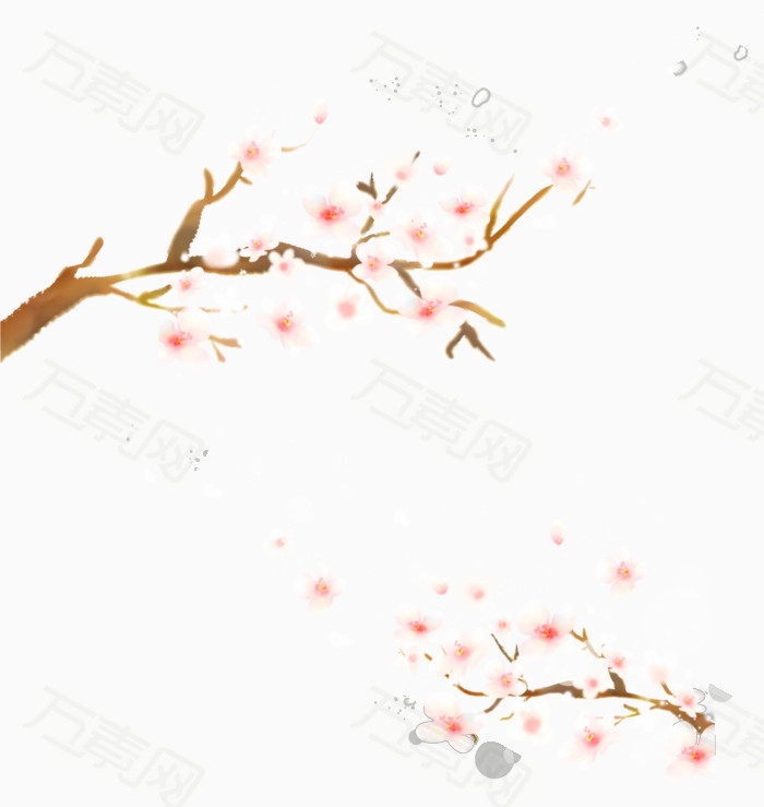 树枝素材 樱花素材 清新花朵素材 花朵素材