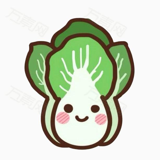 白菜 青菜 蔬菜 拟人化 食物 卡通 手绘