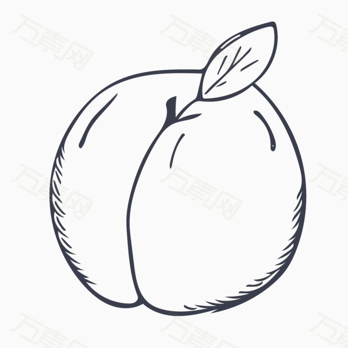 手绘线稿 水蜜桃 水果 桃子 手绘桃子