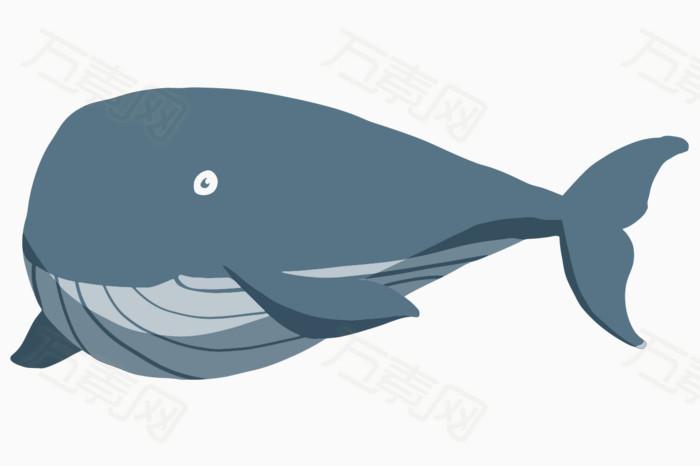 卡通鲸鱼,手绘鲸鱼,可爱鲸鱼,鲸鱼,鱼类,鱼,海底动物,夏季元素