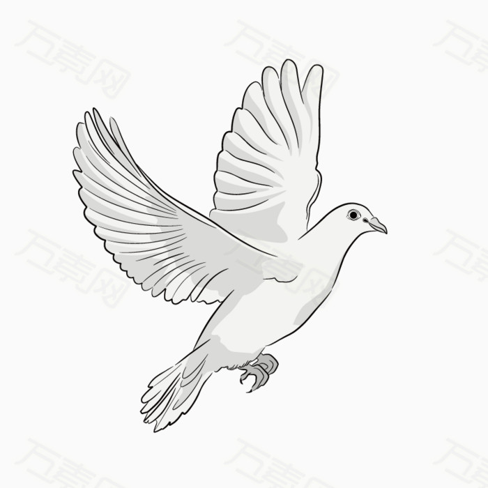 和平鸽图片免费下载_卡通手绘_万素网