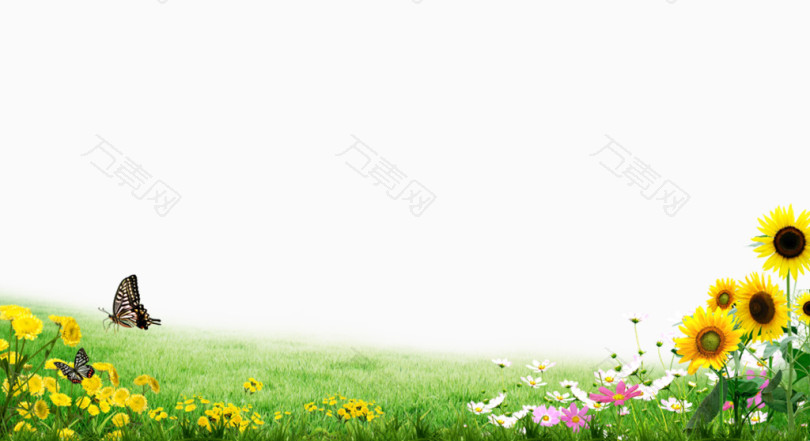 春天草地蝴蝶背景素材
