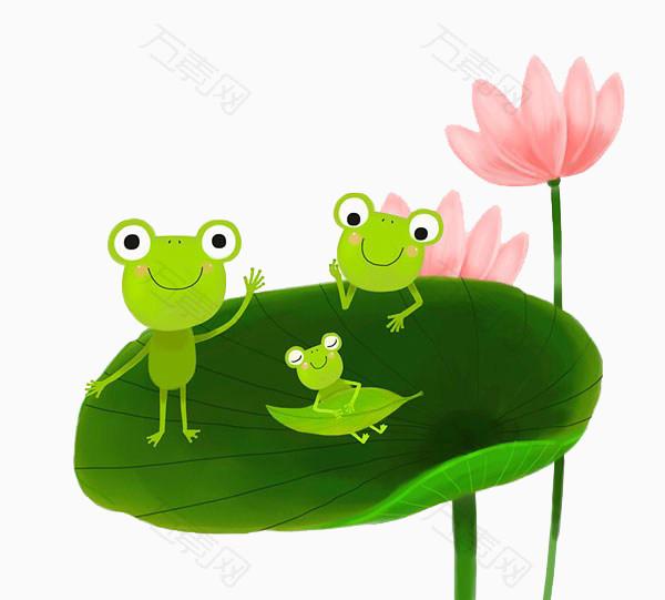 荷叶上的青蛙一家图片