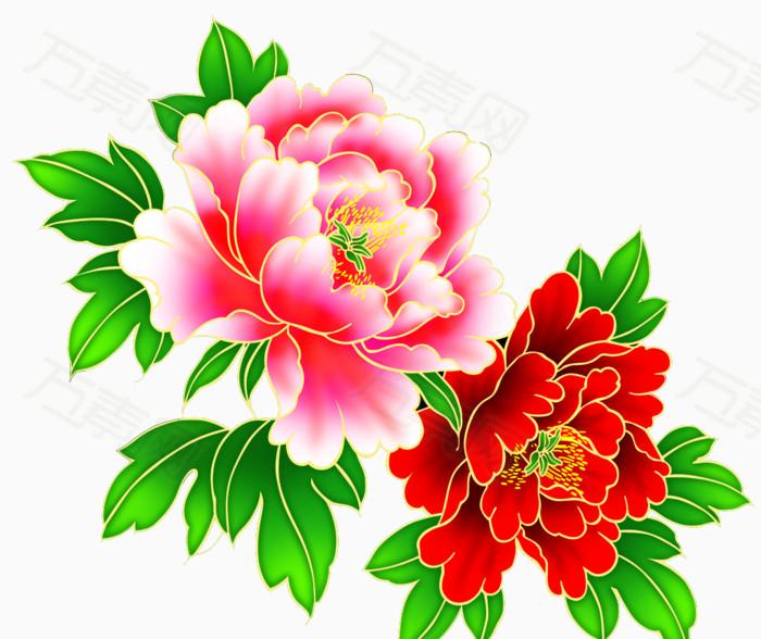 大花朵,花卉,金边,粉色,红色,牡丹花