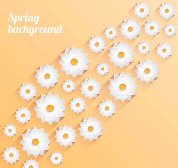 春天白色花卉背景