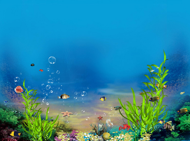 海底 世界 珊瑚 海草 海报 背景 元素