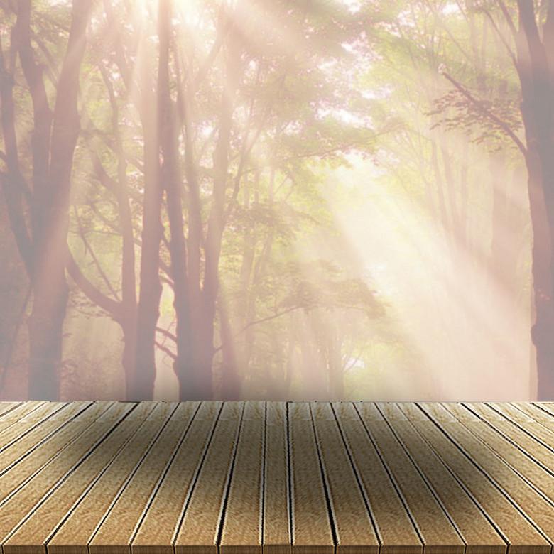 冬季树林中的阳光背景