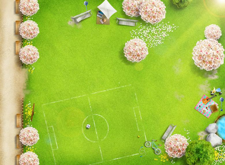 布满白色花朵的草地上的足球场