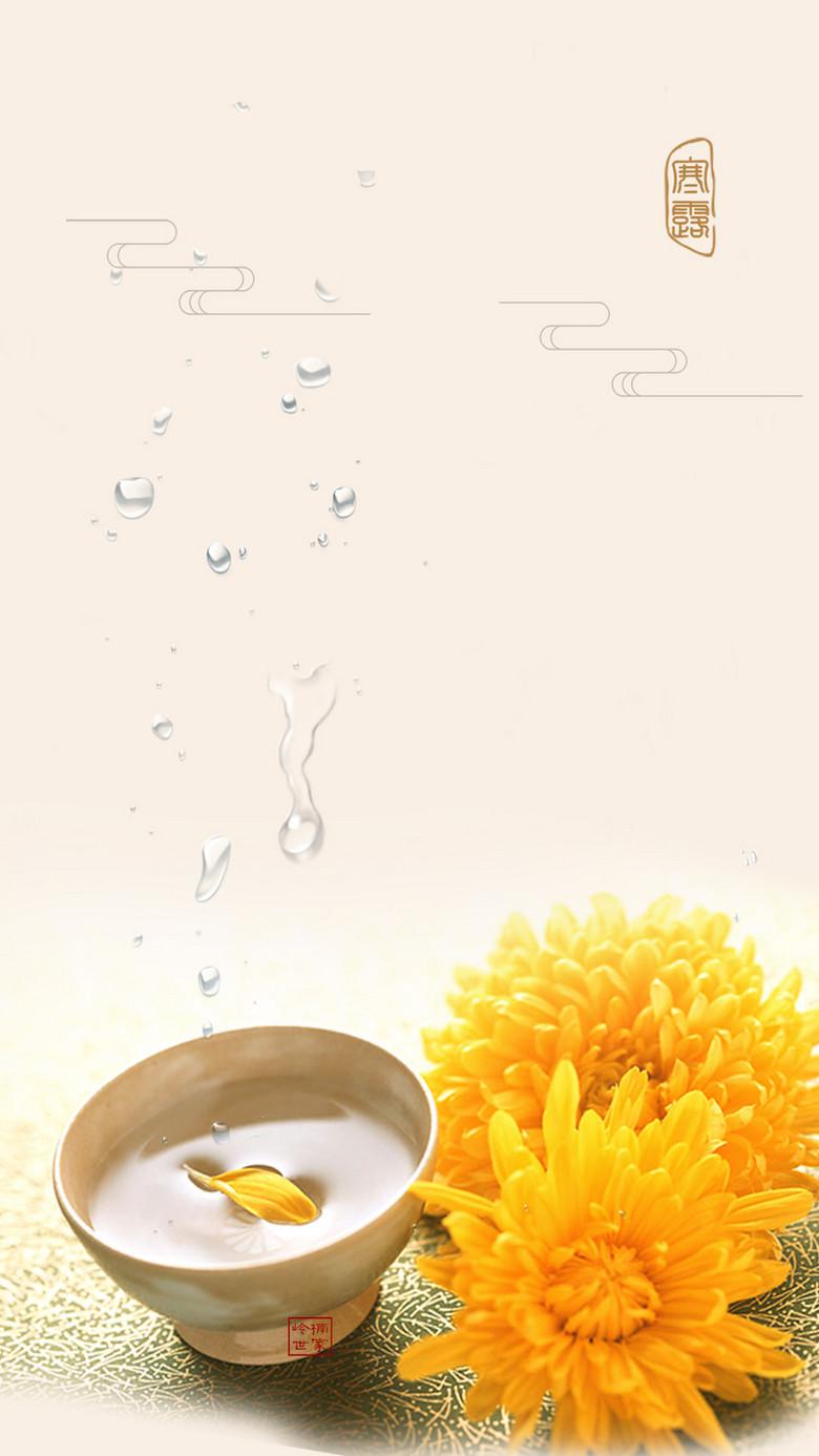早餐饮品菊花茶悠闲生活