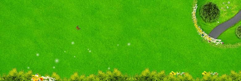 绿色草地海报背景