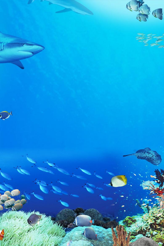 绚丽时尚海洋世界