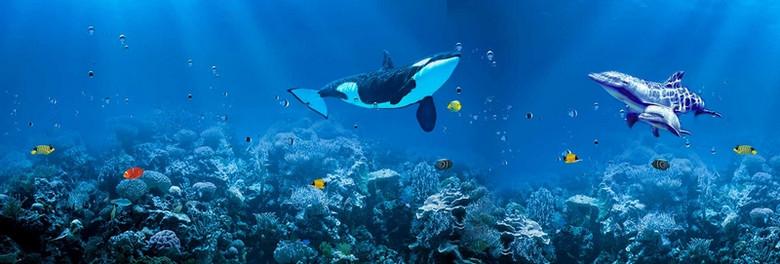 梦幻海底世界背景