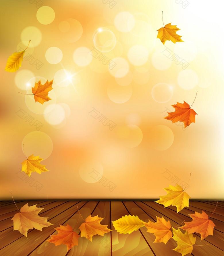 美丽的秋天树叶背景素材