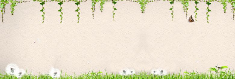 质感墙壁绿色植物海报背景