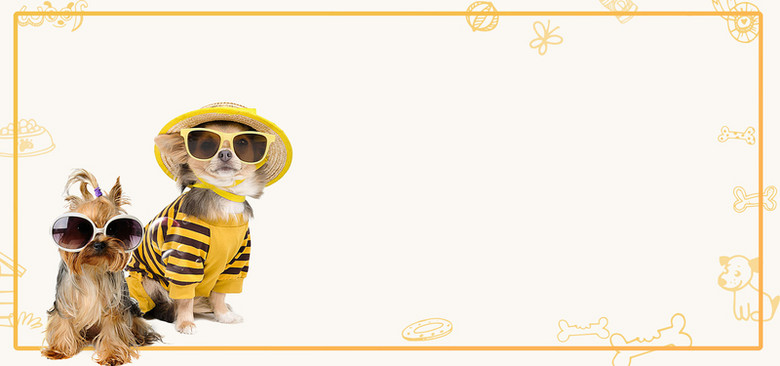 萌宠来了可爱宠物黄色卡通banner