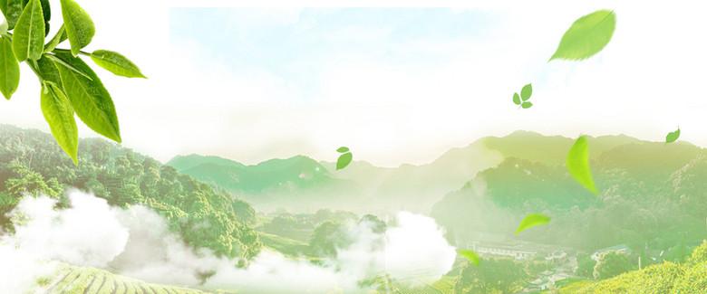 茶叶茶田清新绿色海报背景