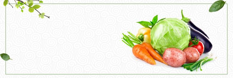 绿色清新蔬菜水果生鲜食品电商banner