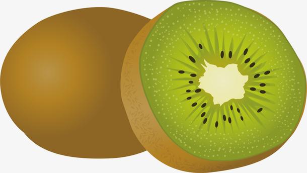 卡通猕猴桃矢量图下载