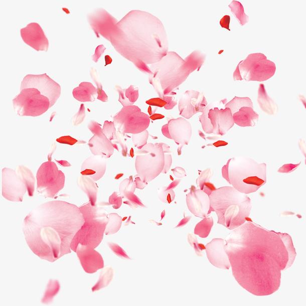 粉色桃花飘