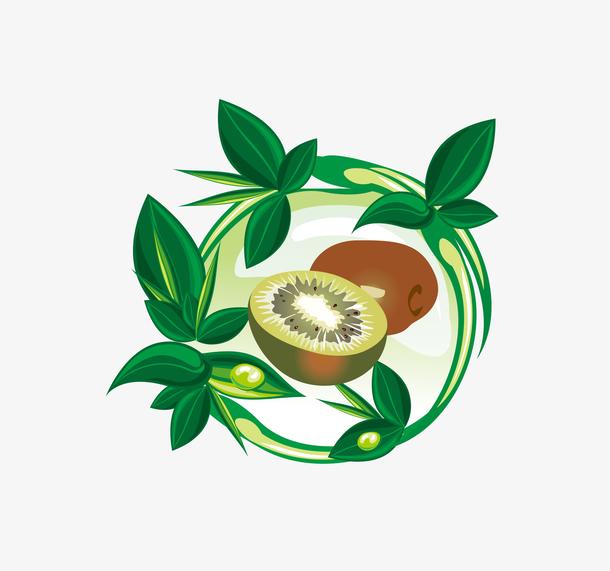 猕猴桃矢量素材