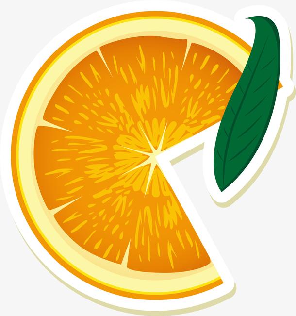 矢量图新鲜切片橙子