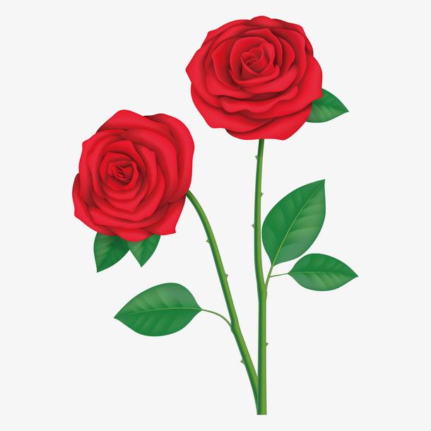 母亲节漂亮装饰花朵素材